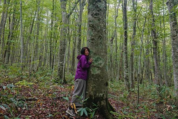 森のプロフィール画像
